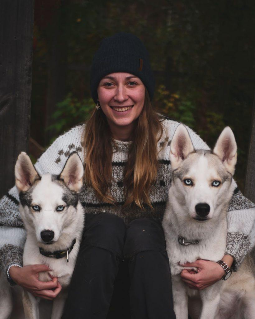 voyage calme chien de traineau laponie